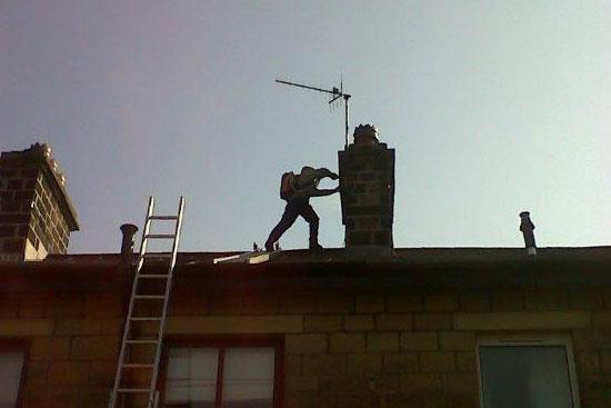 wasp-chimney